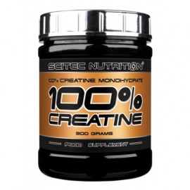 Performance Creatine (300Gram)
